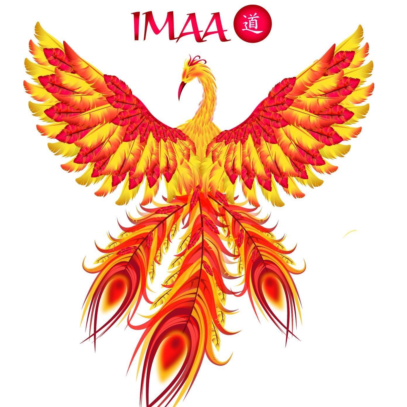 Accademia IMAA logo